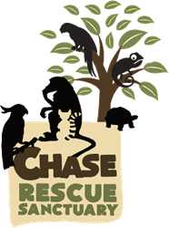 Chase Rescue Sanctuary